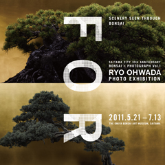 """RYO OHWADA """"FORM"""""""